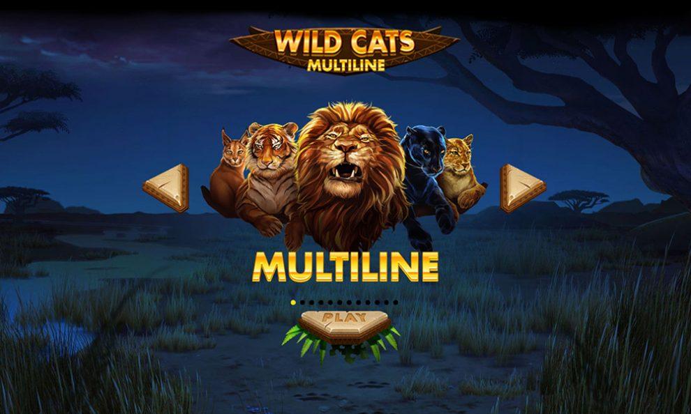 Das ist Wild Cats Multiline!
